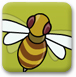 捕捉大黄蜂