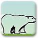 愤怒北极熊