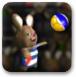 疯狂兔子打排球