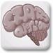 神经病的大脑