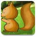 小松鼠森林之旅