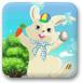 兔兔毛茸茸