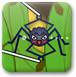 蜘蛛捕昆虫