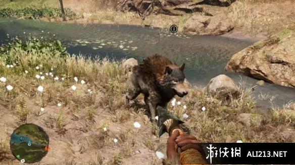 孤岛惊魂:原始杀戮动物数据大全图鉴(3)