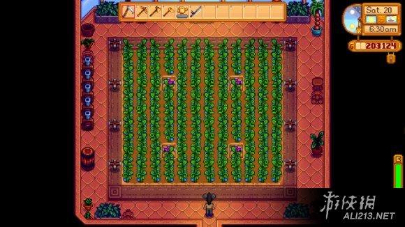 《像素谷》农场设计图文详解攻略