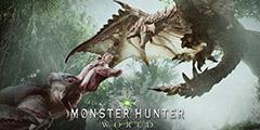 《怪物猎人世界》PC版强档攻略