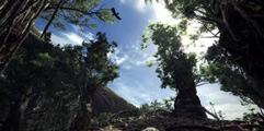 《怪物猎人世界》太刀招式全介绍 太刀怎么操作?