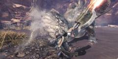 《怪物猎人世界》红莲圣女对阵雌雄双煞苍龙视频分享