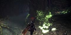《怪物猎人世界》技能大全 技能怎么升级获得?