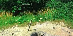 《天国:拯救》朗基努斯长剑位置分享 朗基努斯长剑在哪?