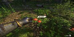 《天国:拯救》草药分布位置一览