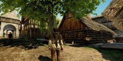 《天国:拯救》萌新初期玩法技巧 初期路线选择指南
