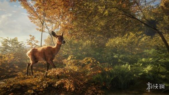 《猎人:野性的呼唤》快速移动方法 怎么快速移动?