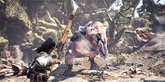 《怪物猎人世界》各流派弓配装推荐 弓穿什么装备好?