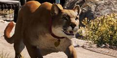 《孤岛惊魂5》全可雇佣野兽一览 有哪些宠物伙伴?