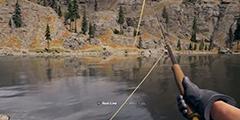 《孤岛惊魂5》钓鱼攻略视频 钓鱼有什么技巧?