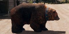 《孤岛惊魂5》怎么样?游戏内容玩法全图文介绍