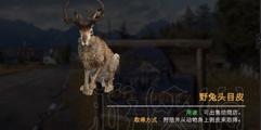 《孤岛惊魂5》野兔狩猎点推荐 野兔哪里抓比较好?