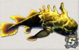 古代深渊鱼