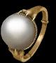 白猫誓约戒指