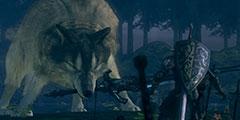 《黑暗之魂重制版》新手须知小技巧分享 有哪些技巧?