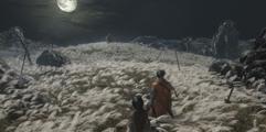 《只狼》游戏试玩流程图文详解 剧情玩法图文介绍