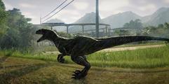 《侏罗纪世界:进化》恐龙跑出来怎么办?全恐龙饲养范围建议一览
