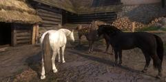 《天国:拯救》DLC东山再起马匹及盔甲图鉴 马甲怎么买?