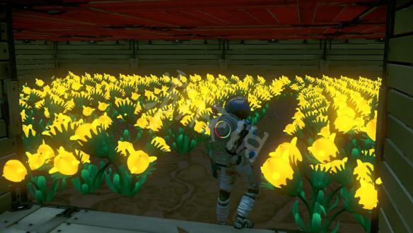 《无人深空》活体玻璃农场种植图文教程 活体玻璃农场怎么赚钱?