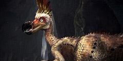 《怪物猎人世界》搔鸟怎么打?搔鸟打法图文指南