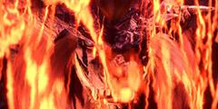 《怪物猎人世界》pc操作招式视频教程 pc盾斧怎么充能?