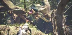 《怪物猎人世界》快速调和加使用道具教学视频 道具怎么用?