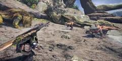 《怪物猎人世界》斗技大会双角龙怎么打?斗技场双角龙打法视频