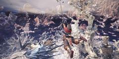 《怪物猎人世界》角龙怎么打?角龙太刀怎么打?