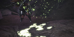《怪物猎人世界》泥鱼龙打法攻略 泥鱼龙怎么打?