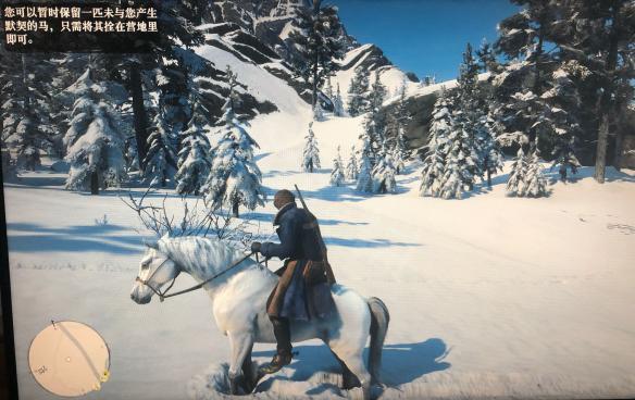 荒野大镖客2马匹怎么驯服 荒野大镖客2马驯服方法