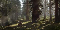 《荒野大镖客2》捕兽人在哪里?捕兽人位置一览