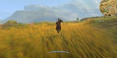 《河洛群侠传》攻略谁偷了长剑 谁偷了长剑怎么过?
