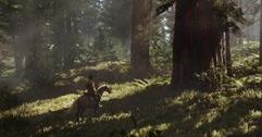 《荒野大镖客2》营地装饰品有哪些?营地装饰品制作方法