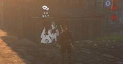 《河洛群侠传》大研镇双人组百花剑法获得方法介绍 百花剑法怎么得