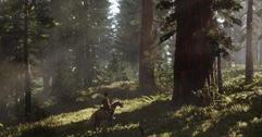 《荒野大镖客2》配方有哪些 野外配方大全视频分享