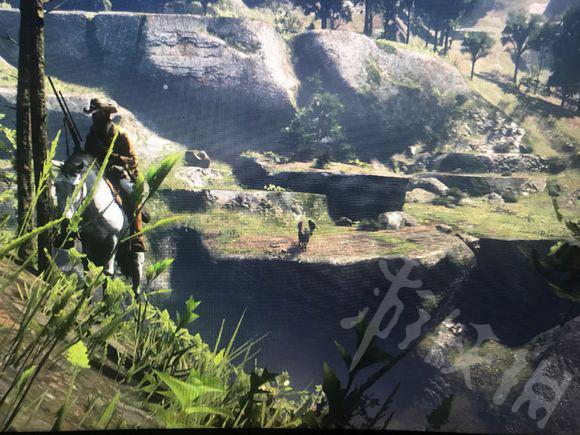 荒野大镖客2非传说驼鹿在哪里狩猎 非传说驼鹿刷新地点指南1