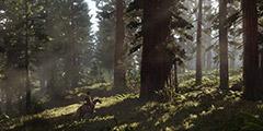 《荒野大镖客2》狩猎有哪些细节?狩猎技巧大全