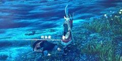 《河洛群侠传》深夜钓鱼翁任务怎么做?深夜钓鱼翁任务攻略