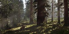 《荒野大镖客2》武器专家7怎么完成?武器专家7完成攻略