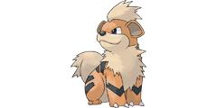 《精灵宝可梦皮卡丘伊布》卡蒂狗全进化图鉴一览 卡蒂狗配招攻略分享