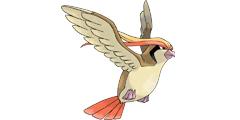 《精灵宝可梦Let's Go》大比鸟全配招一览 大比鸟资料详解