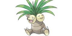 《精灵宝可梦Let's Go》椰蛋树全配招一览 椰蛋树图鉴详情介绍