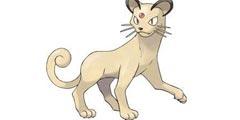 《精灵宝可梦Let's Go》猫老大全招式属性一览 猫老大全资料详解