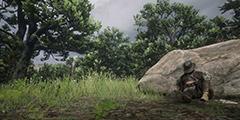 《荒野大镖客2》珍品任务怎么做?珍品任务详解